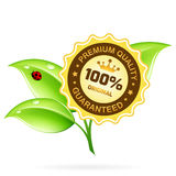 Premium Quality Label with Leaves Royalty Free Stock Image