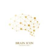 Premium Vector Template Brain Logo. Creative Concept Design Brain Icon. Medical Design Golden Brain Logo. Stock Photos
