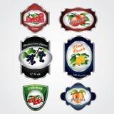 Premium Vintage Fruit Labels. A set of premium vintage fruit juice and alcohol labels Royalty Free Illustration
