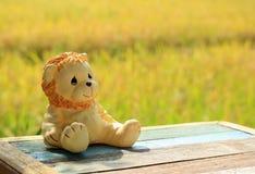 Prenant un bain de soleil près de la rizière avec les usines de riz mûres, un jouet se reposant de lion sur le banc en bois Photo stock