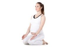 Prenatal joga, Vajrasana Zdjęcie Stock