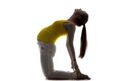 Prenatal Yoga, Camel Pose Stock Image