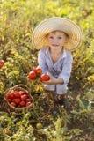 Prenda il raccolto Immagini Stock Libere da Diritti