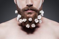 Prenda la buona cura della vostra barba! Immagini Stock