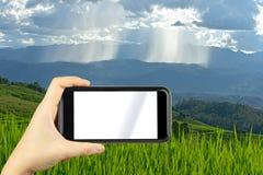 prenda la foto dallo smartphone Giacimento a terrazze sulla montagna, PA Po del riso Immagine Stock