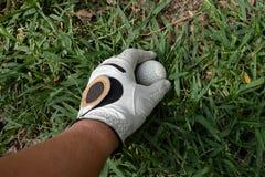 prenda un golfball su erba fotografie stock