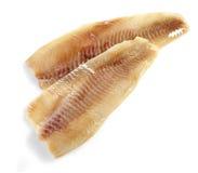 Prendedero de pescados crudo fresco de la brema Fotografía de archivo libre de regalías