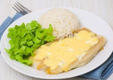 Prendedero de pescados debajo del queso con arroz y ensalada Fotografía de archivo libre de regalías