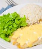 Prendedero de pescados debajo del queso con arroz y ensalada Fotos de archivo