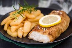 Prendedero de pescados frescos y patatas fritas en una placa Imagen de archivo libre de regalías