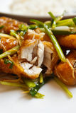 Prendedero de pescados frito con el jengibre. Imagen de archivo libre de regalías