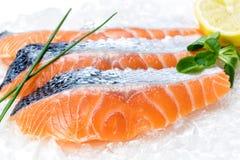 Prendederos de color salmón frescos en el hielo fotografía de archivo libre de regalías