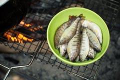 Prendedor fresco dos peixes Foto de Stock