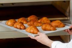 Prendendo i croissant dal forno immagini stock libere da diritti