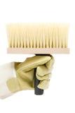 Prendendo uma escova grande foto de stock royalty free
