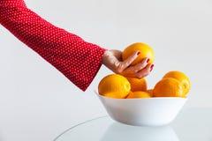 Prendere arancia Immagini Stock Libere da Diritti