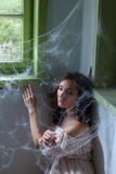 Prendido nos spiderwebs Fotografia de Stock