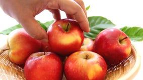 Prendre la pomme rouge du panier banque de vidéos