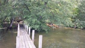 Prendre le déjeuner par la rivière Images stock