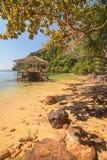 Prendre un bain de soleil la terrasse dans une lagune tropicale Images stock