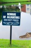 Prenez garde des alligators signent avec l'alligator dans le backgr Image libre de droits