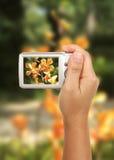 Prenez une photographie Images libres de droits