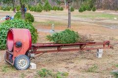 Prensa da árvore de Natal fotos de stock