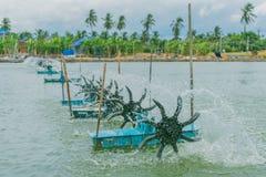 Prensa de la turbina para la charca del camarón Imagenes de archivo