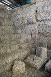 Prensas listas de la soja para el combustible durante el invierno frío Fotografía de archivo