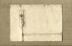 Prentbriefkaar en canvas Royalty-vrije Stock Foto