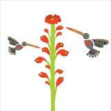 Prentbriefkaar, heldere bloemen met vogelkolibrie, seizoengebonden pollina Royalty-vrije Stock Afbeeldingen