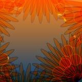Prentbriefkaar met de zomerbloem blowball Royalty-vrije Stock Fotografie