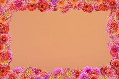 Prentbriefkaar met een kader van bloemen op een achtergrond van dikke sinaasappel Stock Afbeeldingen