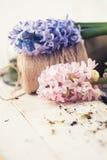 Prentbriefkaar met elegante bloemen Stock Fotografie
