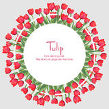 Prentbriefkaar met rode tulpen gelegen aan de rand Geschikt in een cirkel De bloemen van de veelhoekstijl Royalty-vrije Stock Foto