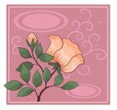 Prentbriefkaar met rozebottels Stock Afbeelding