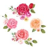 Prentbriefkaar met rozen Bloemen achtergrond ontwerpsamenstelling stock illustratie