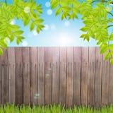Prentbriefkaar met vers de lentegebladerte en lege plaats voor uw tex Royalty-vrije Stock Afbeelding