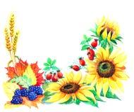 Prentbriefkaar van de herfstseizoen van tuinen Royalty-vrije Stock Foto's