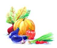Prentbriefkaar van de herfstseizoen van tuinen Royalty-vrije Stock Afbeeldingen
