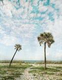 Prentbriefkaar van Tropische Parardise stock foto