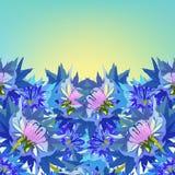 Prentbriefkaarkorenbloem van wilde bloemen bij dageraad Vector illustratie stock illustratie