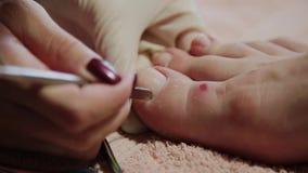 Preoccupandosi per il pedicure delle gambe della ragazza, lucidatura, belle luci Pedicure nel salone Le cure del padrone per i ch video d archivio