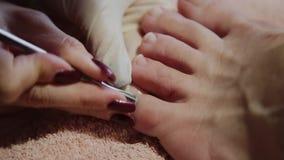 Preoccupandosi per il pedicure delle gambe della ragazza, lucidatura, belle luci Pedicure nel salone Le cure del padrone per i ch stock footage