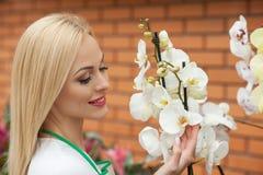 Preoccuparsi allegro del proprietario di negozio del giardino dei fiori immagine stock libera da diritti