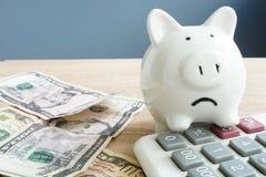 Preoccupazioni dei soldi Porcellino infelice e poche banconote con il calcolatore Problemi con soldi immagini stock