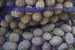 Prepacked potatoes of two varieties. The potato harvest is packaged in sack bags Stock Image