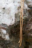 Prepairing für kletterndes Training Stockfoto