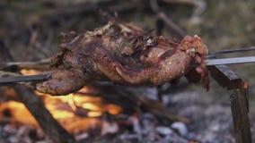 Preparação da galinha, caçando o tema Cozinhando um corpo inteiro do faisão em espetos de um ferro sobre uma fogueira com carvões video estoque