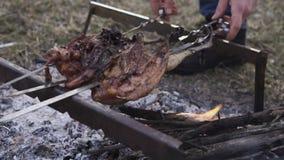 Preparação da galinha, caçando o tema Cozinhar um corpo inteiro do faisão em espetos de um ferro sobre uma fogueira com carvões a filme